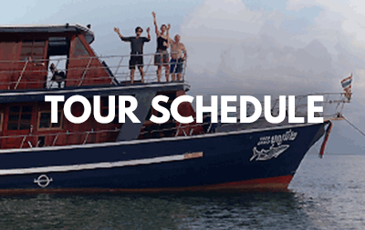 Tourdates of the surin dive safari
